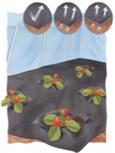 Perforovaná čierna fólia na jahody 1,20*10m
