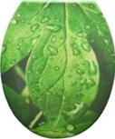 Duroplast WC sedák, zelený list
